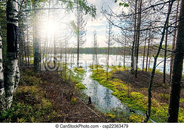 Autumn landscape with Salmon lake - csp22363479