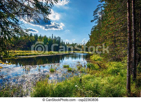 Autumn landscape with Salmon lake - csp22363836