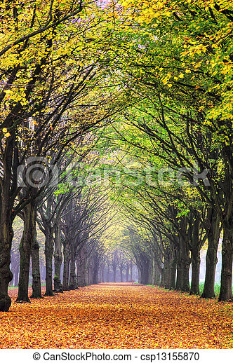 Autumn lane - csp13155870