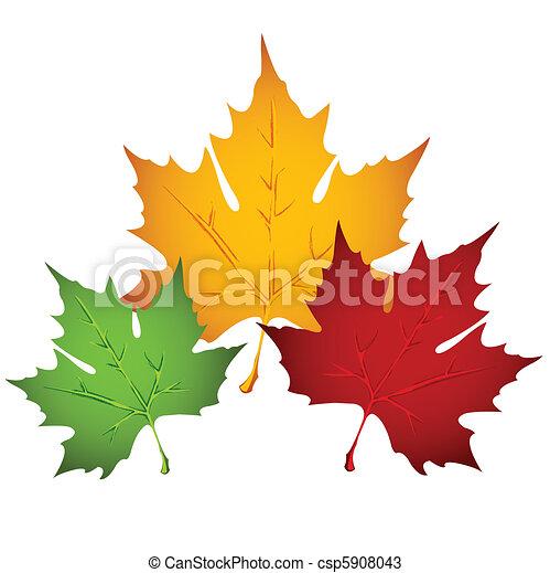 Autumn leaf - csp5908043
