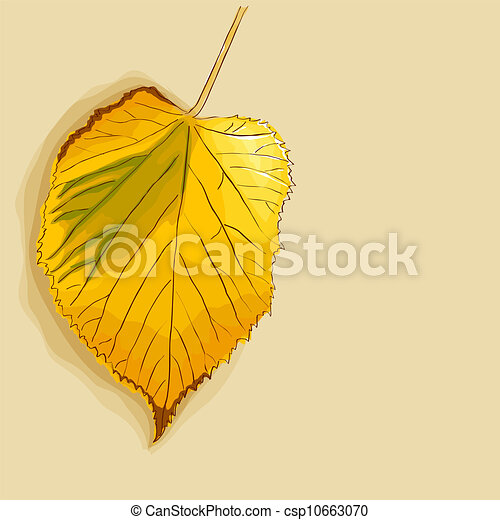 Autumn leaf - csp10663070