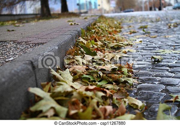 autumn leaf - csp11267880