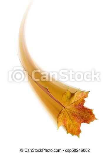 autumn leaf - csp58246082
