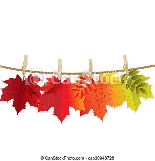 Autumn Leaf - csp30948728