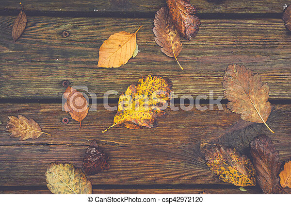 Autumn leafs on a wooden background - csp42972120