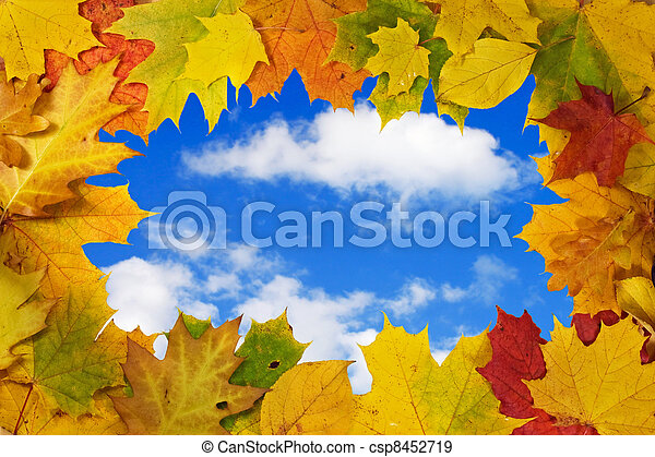 autumn leaves against blue sky background - csp8452719
