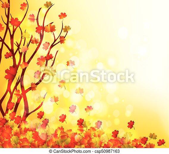 Autumn leaves background - csp50987163