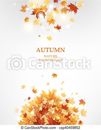 Autumn leaves background - csp40459852