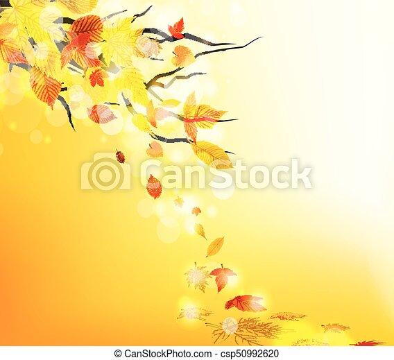 Autumn leaves background - csp50992620