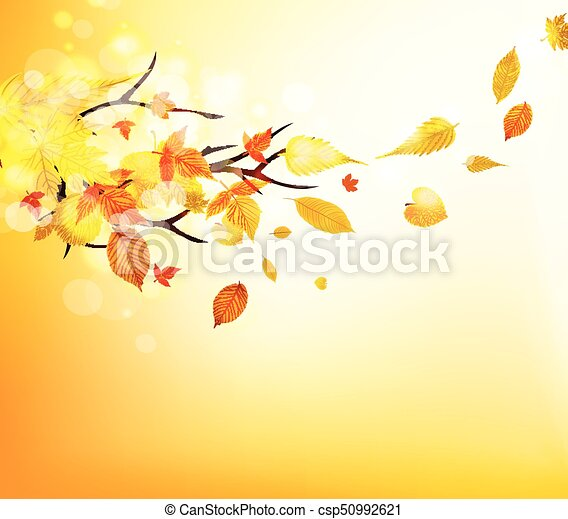 Autumn leaves background - csp50992621