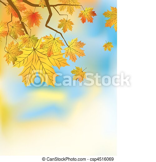 Autumn leaves background in a sunny day. - csp4516069