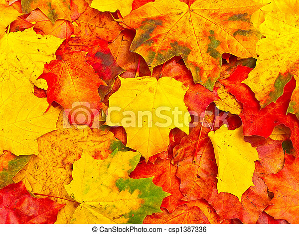 autumn leaves background - csp1387336