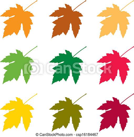Autumn leaves  - csp16184467