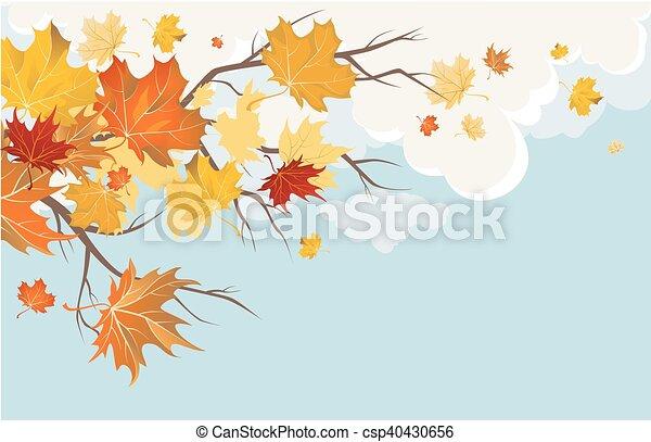 Autumn leaves - csp40430656
