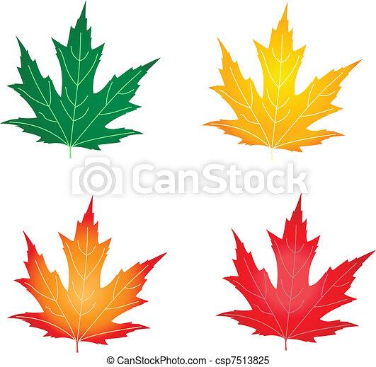 autumn leaves - csp7513825