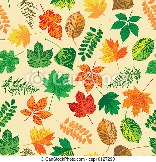 Autumn leaves - csp10127290