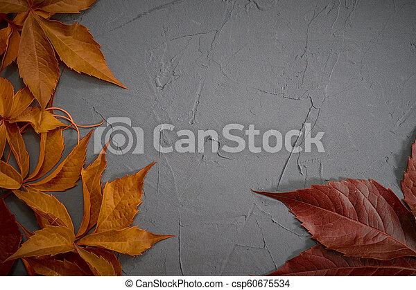 Autumn leaves frame on black plaster background - csp60675534