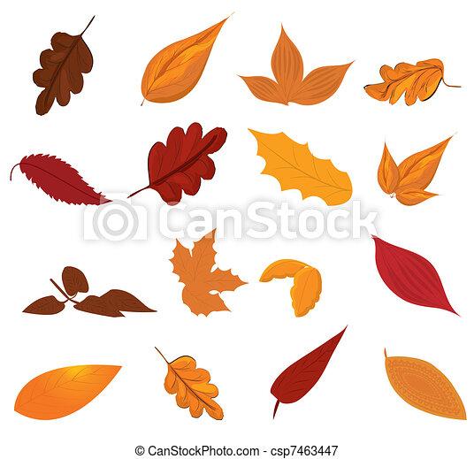 Autumn leaves - csp7463447