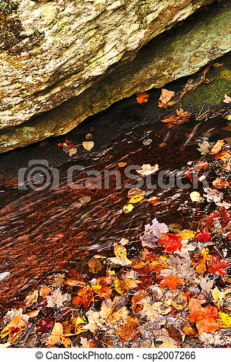 Autumn leaves in lake - csp2007266