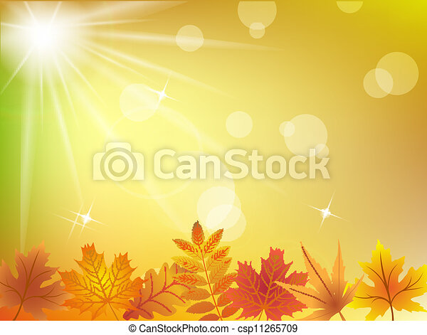 Autumn leaves in sunlight background - csp11265709