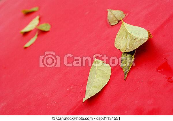 autumn leaves on a red car background - csp31134551