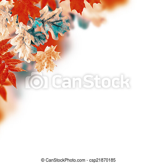 Autumn leaves on a white background - csp21870185