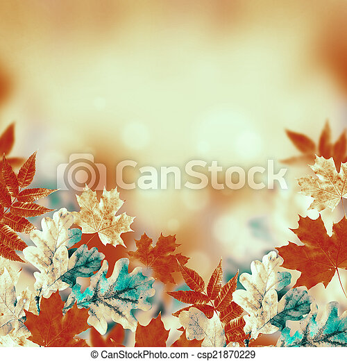 Autumn leaves on a white background - csp21870229