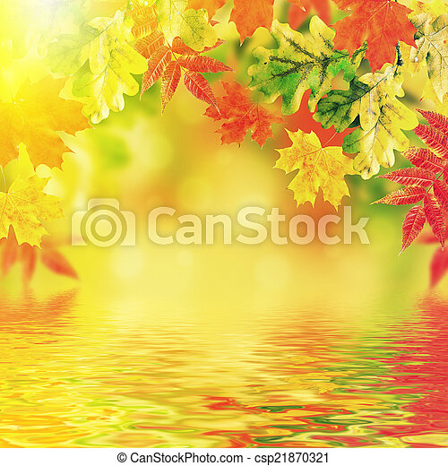 Autumn leaves on a white background - csp21870321