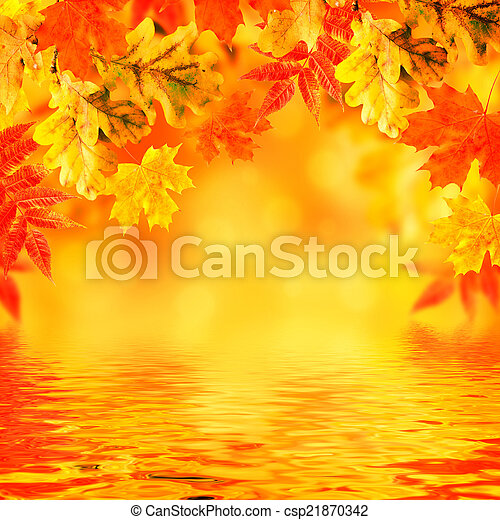 Autumn leaves on a white background - csp21870342