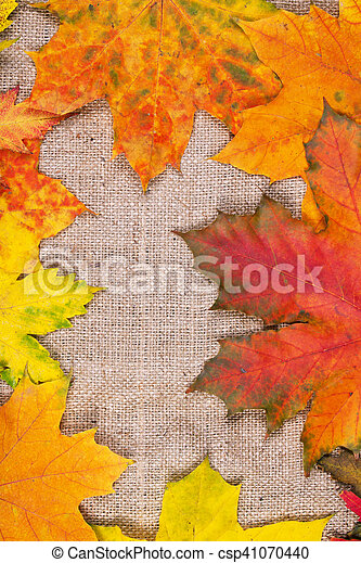 Autumn leaves on sackcloth background - csp41070440