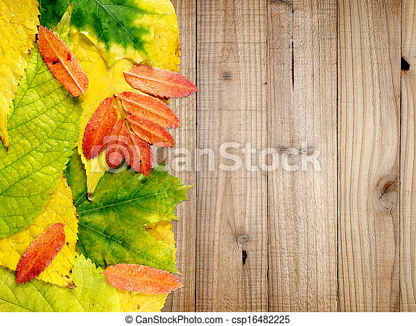 Autumn leaves on wooden background - csp16482225
