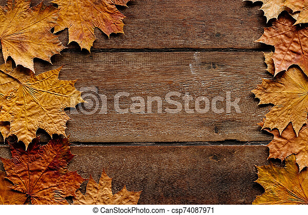 Autumn leaves on wooden background with copy space. Wallpaper for September 1. - csp74087971