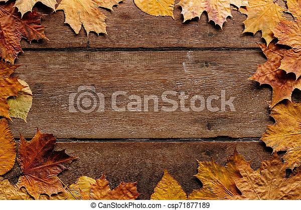 Autumn leaves on wooden background with copy space. Wallpaper for September 1. - csp71877189