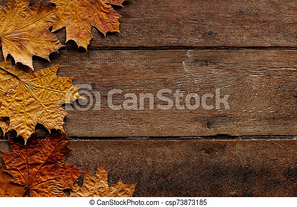 Autumn leaves on wooden background with copy space. Wallpaper for September 1. - csp73873185