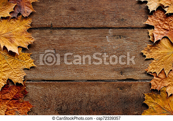 Autumn leaves on wooden background with copy space. Wallpaper for September 1. - csp72339357