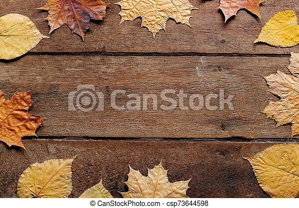 Autumn leaves on wooden background with copy space. Wallpaper for September 1. - csp73644598