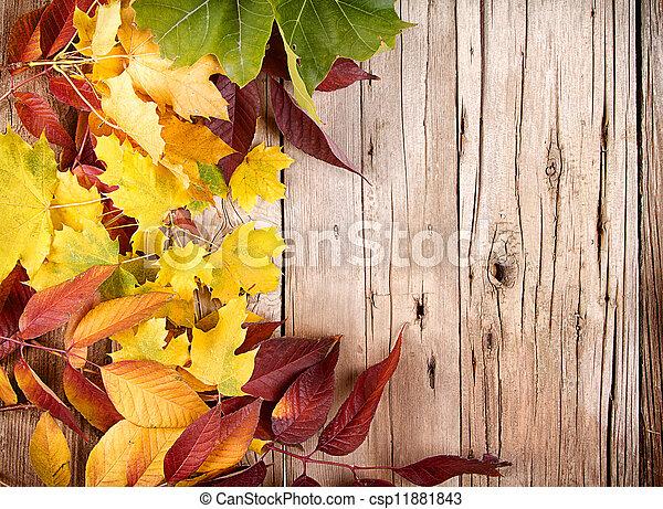 Autumn leaves on wooden plank - csp11881843