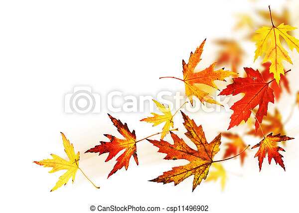 Autumn Leaves over white - csp11496902
