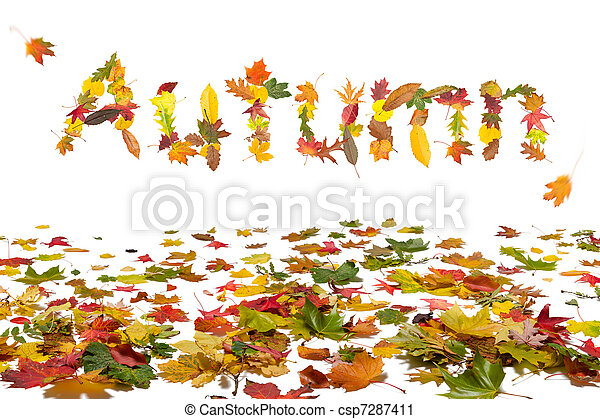 Autumn leaves - csp7287411