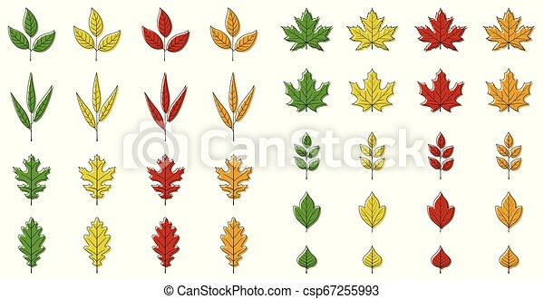 Autumn leaves set - csp67255993