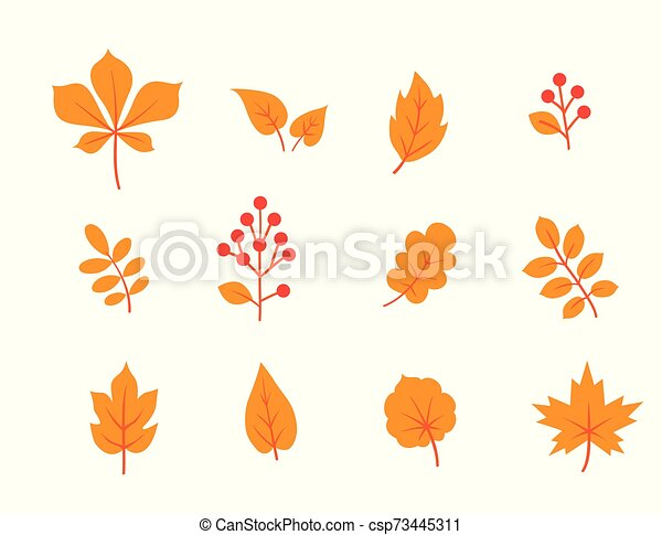 Autumn Leaves Set Fall Leaf And Berries Nature Icons Overwhite Background