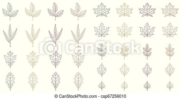 Autumn leaves set - csp67256010