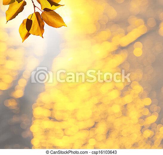 Autumn leaves - csp16103643