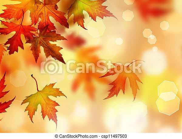 Autumn Leaves - csp11497503