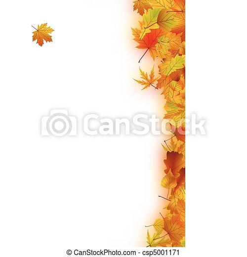 Autumn Leaves - csp5001171