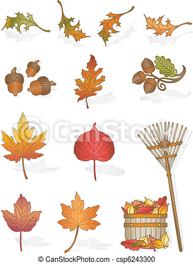 Autumn Leaves - csp6243300