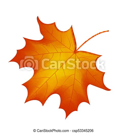 autumn maple leaf vector on a white background vector clipart rh canstockphoto com maple leaf vector icon maple leaf vector logo