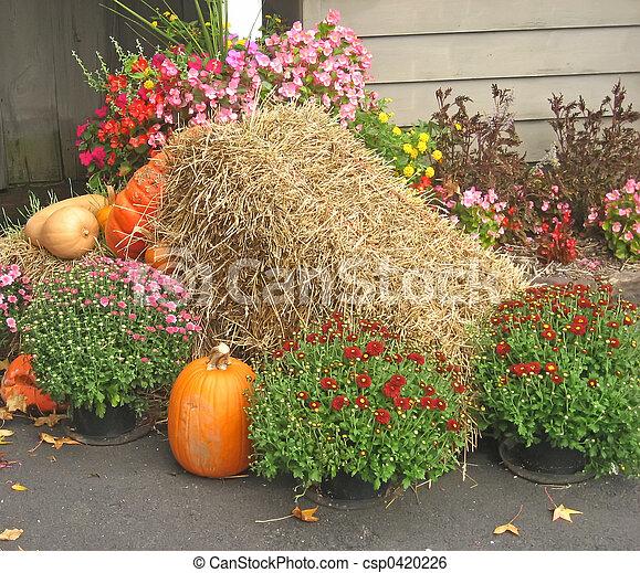 Autumn Mound - csp0420226