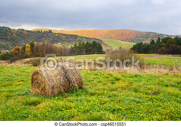 Autumn mountain landscape at sunset with meadow - csp46515551