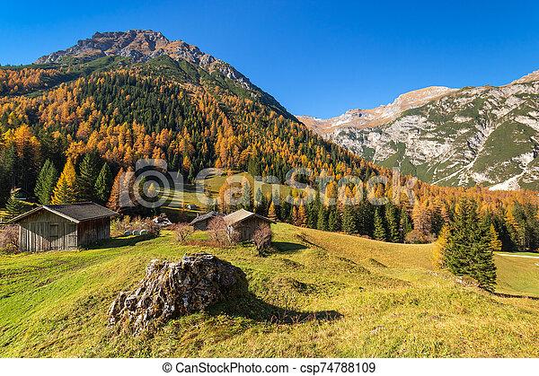 Autumn mountains rural scene. Hiking in Austrian Alps, Tyrol, Austria. - csp74788109